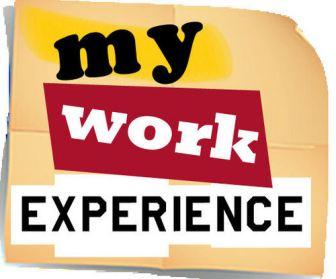 mywork-experience